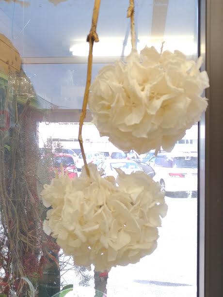 dry flower アジサイ白1000円