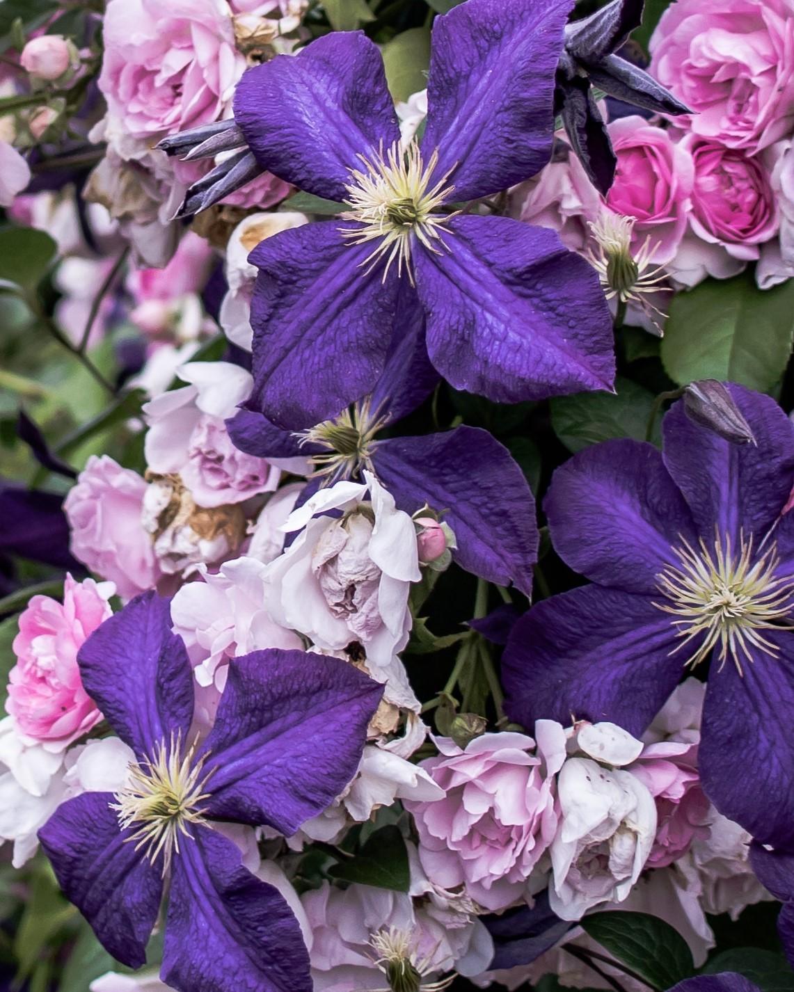 古希祝いの花束