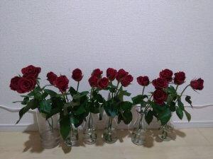バラの花もち実験 4日目