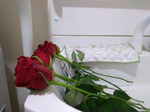 水切りの時にバラを横に寝かせる