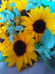 ひまわりとマウンテンミントが入った花束
