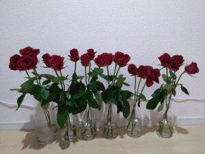 バラの花もち実験 5日目