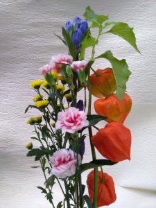 お盆用ほおずきの切花1