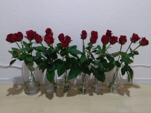 バラの花もち実験 2日目