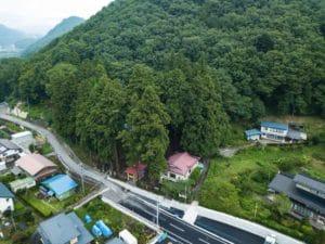 「神杉」に覆われた王城山神社