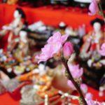花桃と雛人形
